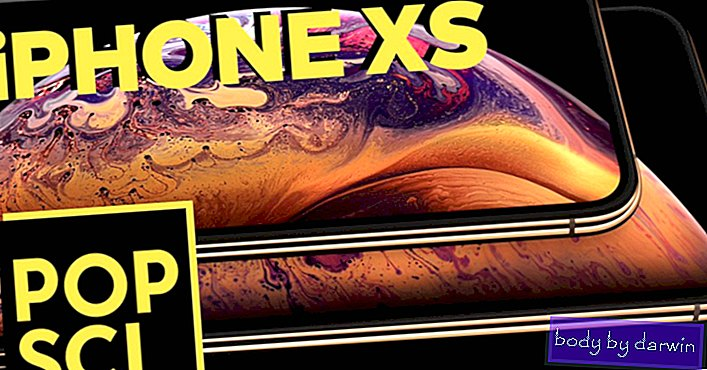 מבט ראשון: iPhone XS, iPhone XS Max ו- Apple Watch סדרה 4